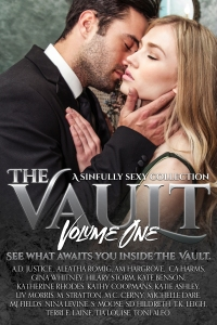 The Vault Vol 1 eBook[2]